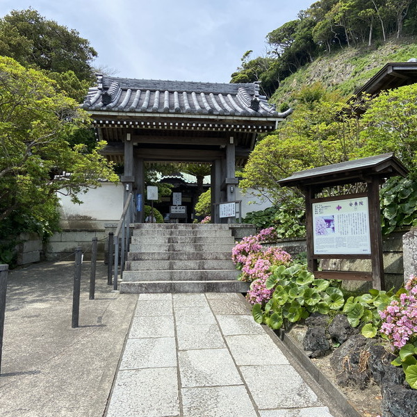 鎌倉・安養院